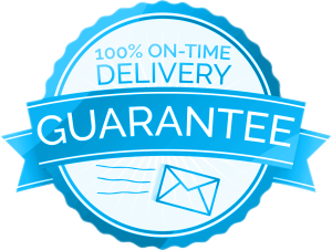 timely delivery icon